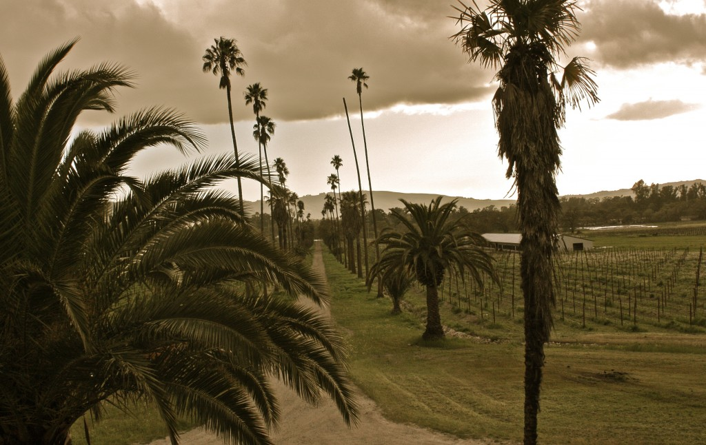 Ominous day